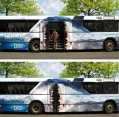 Bus_bloblo